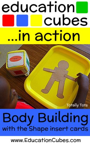 Body Building Education Cubes Shape Activity
