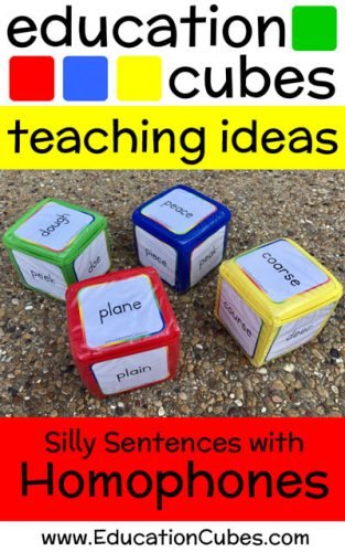 Homophones Silly Sentences with Education Cubes
